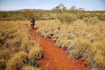 Tom Price  Australien  Hohebene im Karijini Nationalpark