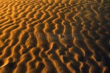 Libya  Sahara desert  sand dunes