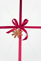 Red ribbon and bow on white background