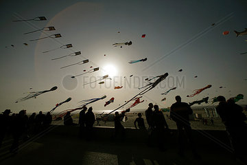 The International Kite festival  Berck sur Mer  France
