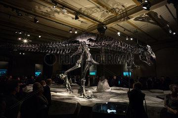 Berlin  Deutschland  Besucher im Naturkundemuseum bei dem Tyrannosaurus rex