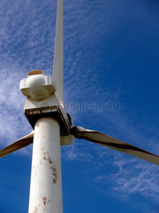 Windpark auf Big Island
