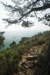 Rocky path  Pointe de Saint-Hernot  Ile Vierge  Crozon Peninsula  Finistère  Brittany  France