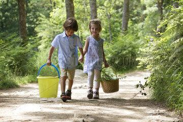 Children walking hand in hand in woods  carrying basket and bucket