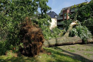 Essen  Deutschland  Sturmschaeden bei Unwetter in NRW