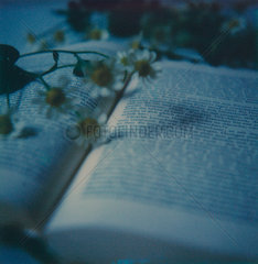 Buch mit Blumen
