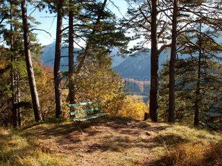 Hohenschwangau  Deutschland  Herbstlandschaft mit Holzbank am Alpsee
