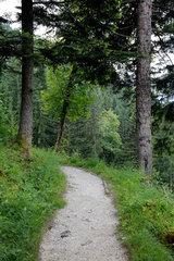 Berchtesgaden  Deutschland  ein Wanderweg auf dem Kehlstein
