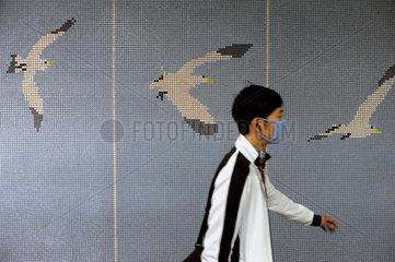 Seoul  Nordkorea  Symbolbild fuer Vogelgrippe