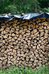 Berchtesgaden  Deutschland  aufgestapelter Brennholzvorrat