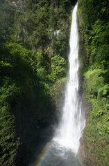 Pont Casse  Dominica  die Middleham Falls im Regenwald