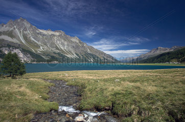 Maloja  Schweiz  das Panorama am Silser See