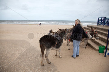 Mablethorpe  Grossbritannien  eine Frau mit Eseln am Strand