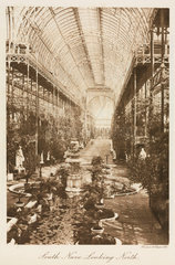 South nave looking north  the Crystal Palace  London  1911.