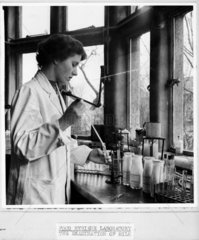 Examination of milk in a food hygiene laboratory  1947-1955.