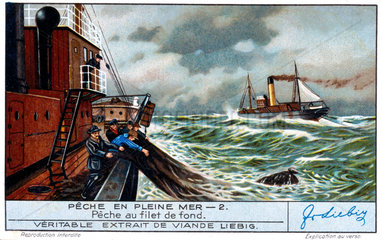 Fishing with a deep sea net  French Liebig trade card  early 20th century.