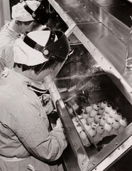 Manufacturing anti-flu vaccine  19 February 1962.