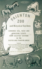 'Paignton Zoo and Botanical Gardens'  BR (SR) poster  c 1950s.