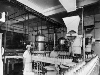 Bottling milk at a dairy  c 1930s.