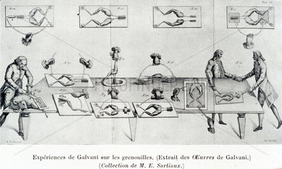 Galvani experiment on frogs' legs  late 18th century.