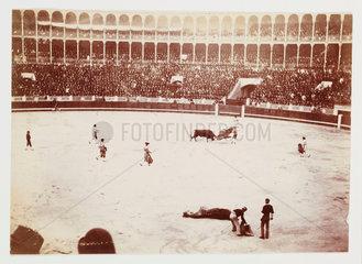 Bullfight  Madrid  c 1931.