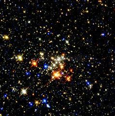 Quintuplet Cluster  1999.