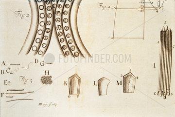 Leeuwenhoek's observations on bacteria  c 1683.