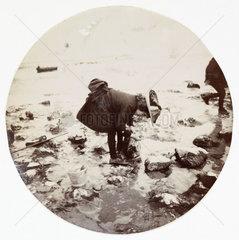 Girl looking in a rock pool  c 1890.