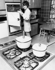 Woman demonstrating the latest cooker techn
