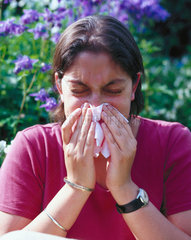 Hay fever sufferer sneezing  London  May 2000.