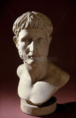 Bust of the physician Marcus Modius Asiaticus  Roman  2nd century AD.