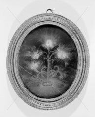 Lichtenberg figure  18th century. Electrost