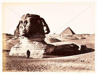 The Sphinx  c 1880.