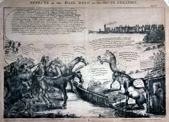 'Effects of the Rail Road on the Brute Creation'  1831.