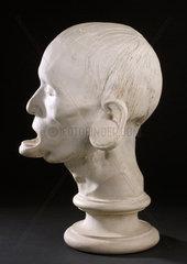 Phrenological head  Edinburgh  1826.