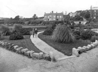 Gardens in Penzance  Cornwall  1922.