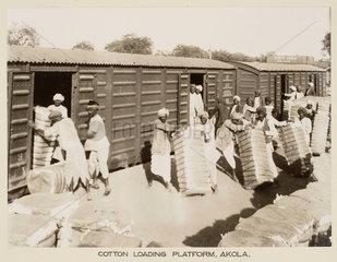 Cotton traffic  Akola Station  Maharashtra  India  c 1930.