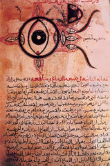 The anatomy of the eye  12th century copy of a 9th century manuscript.