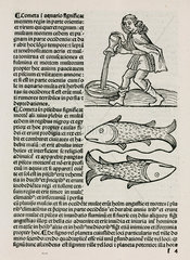 Aquarius and the water carrier and Pisces the fish  1489.