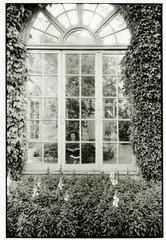 'Conservatory  Harrogate'  c 1968.