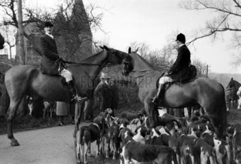 Mounted fox hunters with hounds awaiting th