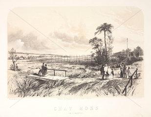 Chat Moss  near Liverpool  1848.