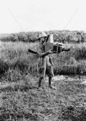 A R Dugmore using large reflex camera to photograph wildlife in Africa  1909.