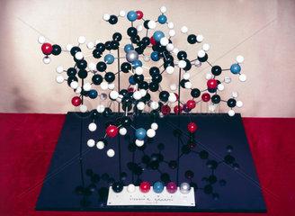 Vitamin B12 molecular structure  c 1957-1958.