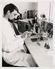 Drug testing at Pfizer Inc  Sandwich  Kent  1962.