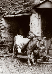 'Boy and donkey'  c 1890s.
