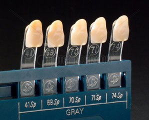 Shade guide for 'Myerson's Special' acrylic teeth  1970-1980.