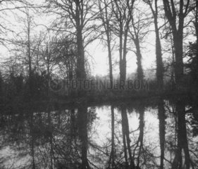 'Trees with reflection'  c 1843.