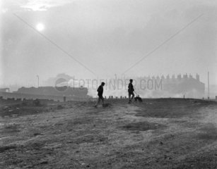Young men walking their dogs by the railway line  Wigan  November 1967.