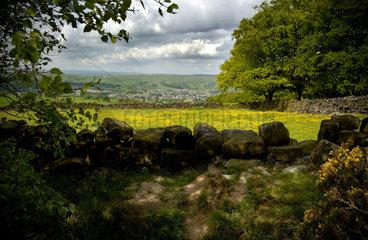 Rural Yorkshire  2007.